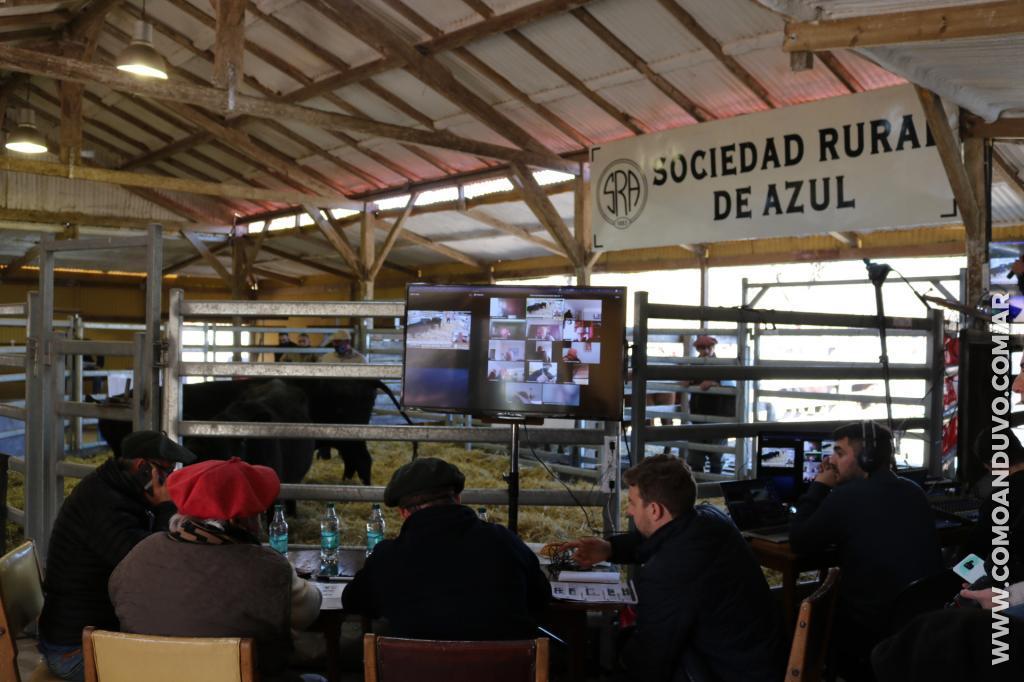 Remate Cabaña Los Tigres Lafontaine – 04-09-2020